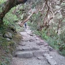 Chemin Inca Machu Picchu Court
