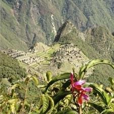 Pérou, Tourisme et Conservation